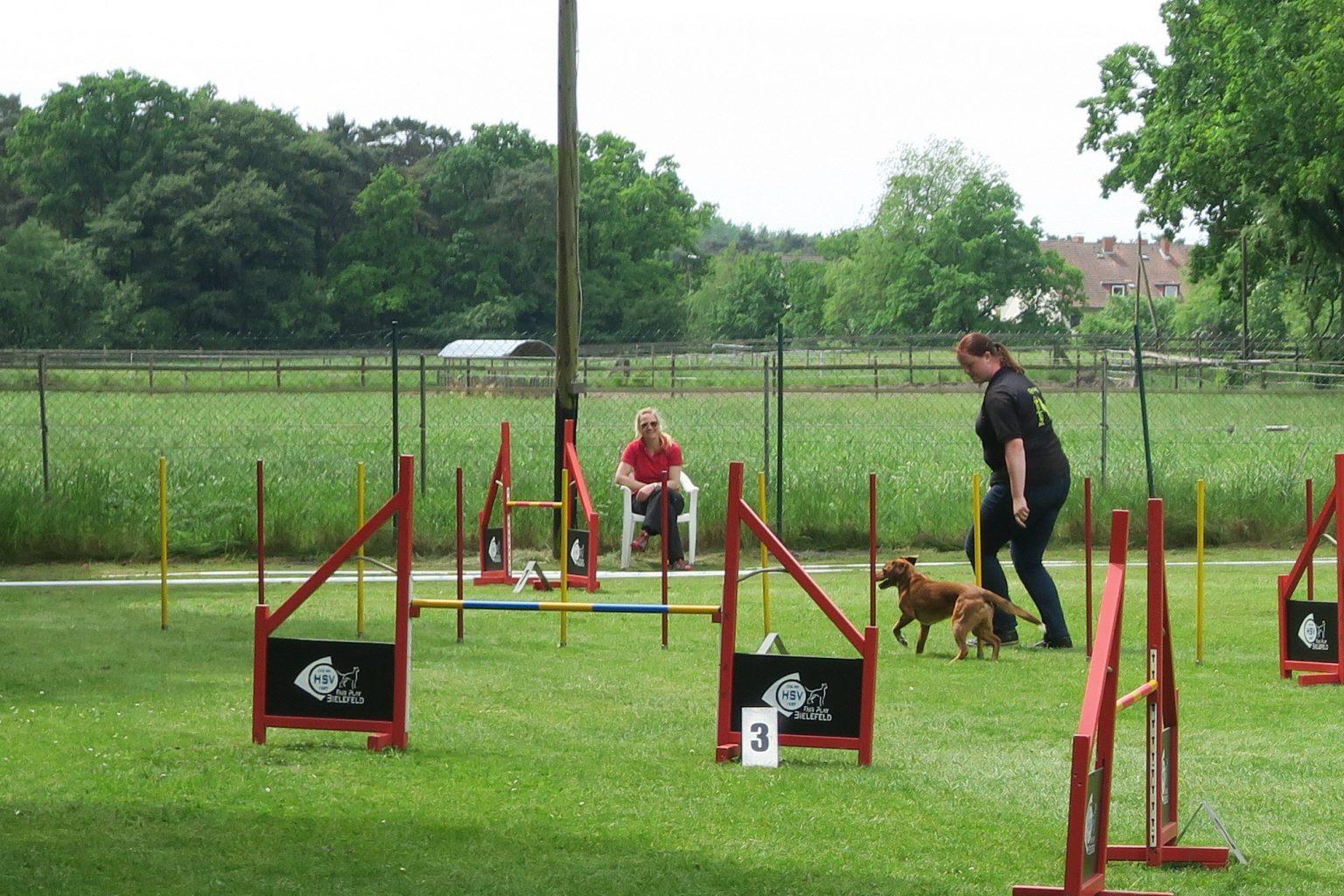 Bild Homepage Hundesport